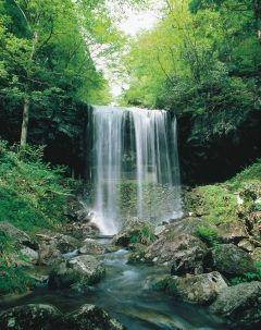岡山県苫田郡鏡野町にある岩井滝は滝の裏側から瀑布を眺められる裏見の滝です  裏見の滝は熊本の鍋ヶ滝が有名ですがこの岩井滝も美しさは負けていません  また滝だけでなく流れる清水も名水百選に選ばれるほどの名水で赤ちゃんを授かる子宝の水とも伝えられてます  tags[岡山県]