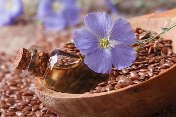 полезные свойста семени льна