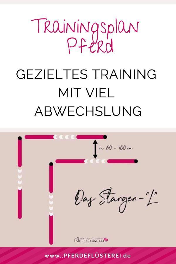 Die Besten Tipps Fur Einen Sinnvollen Trainingsplan Inklusive Kostenlosem Download In 2020 Trainingsplan Training Reiten Lernen