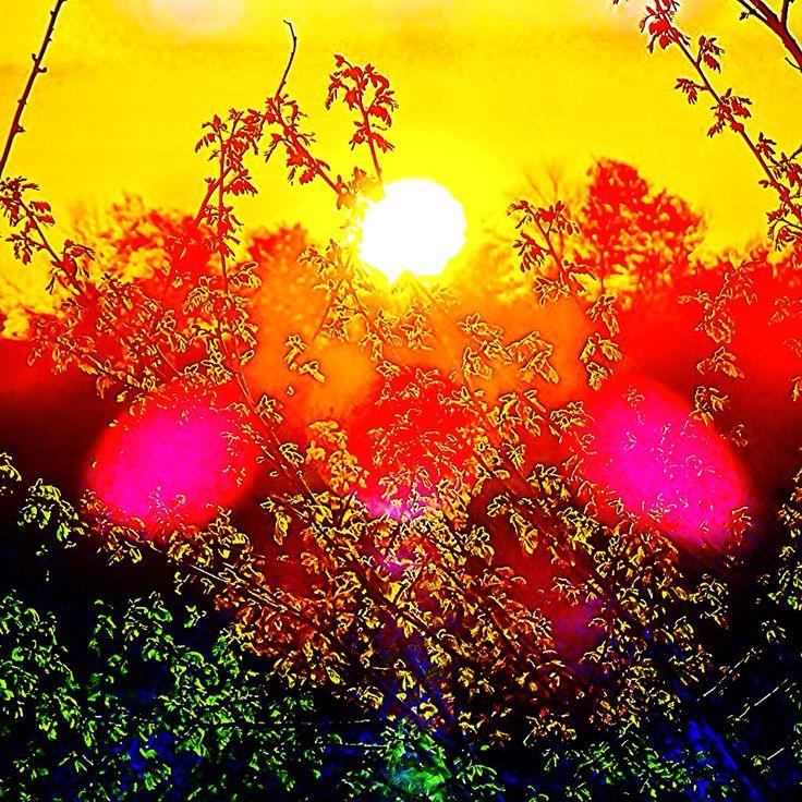 Sunshine Feelings #thessaloniki #welcomemay #wonderland #whatawonderfulworld #whenthesunsgoesdown #relax #iphoneonly #imagine #ilovegreece #orange #photoshopexpress #aviary #Assiros #DimitrisDodoglou #dorkada #deluxefx #feelings #feelthevibe #Greece #Hellas #keepthespiritalive #chill #clouds #colors #nature #mjdoddy #mrdoddy