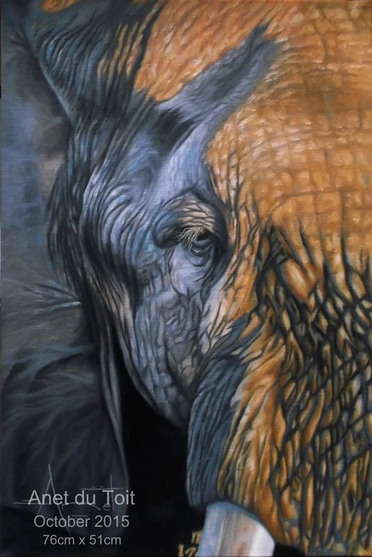 Sunset Elephant. Oil on stretched canvas 76cm x 51cm #elephant #art #wildlife #africa