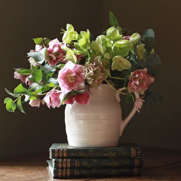 Exquisite New Spring Hellebore's simply presented in a gorgeous English jug. Perfect!  http://www.realflowers.co.uk/mothers-day-collection/scented-rose-narcissi-and-sweet-pea-trio.html