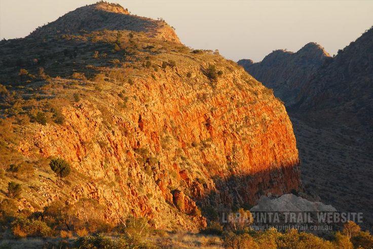 Huge cliffs near Counts Point (Section Eight). Early morning shot. (http://www.larapintatrail.com.au/s8.html). © Explorers Australia Pty Ltd 2014