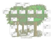 Lots of free Family Tree templates including blended family charts (Family Tree With Cousins)