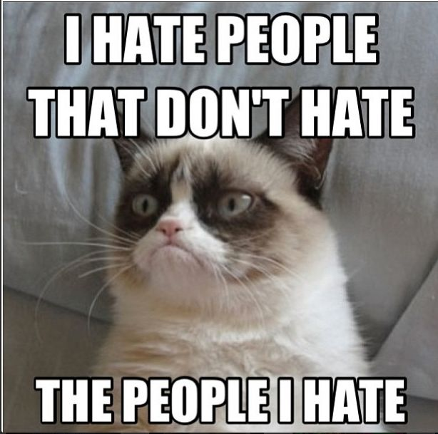 Grumpy cat, grumpy cat quotes, funny grumpy cat quotes ....For the funniest quotes and hilarious photos visit www.bestfunnyjokes4u.com/rofl-best-funny-joke-pic/
