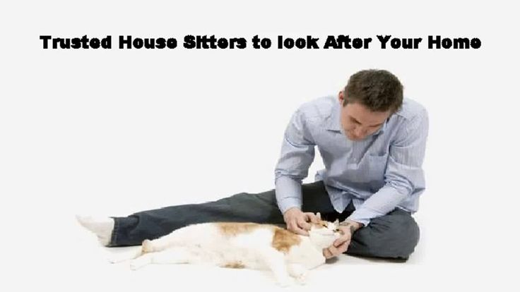http://www.housesitters.com.au/ - Avail the services of the most caring Aussie House sitters with whom your pets will feel at home and you can be rest assure...