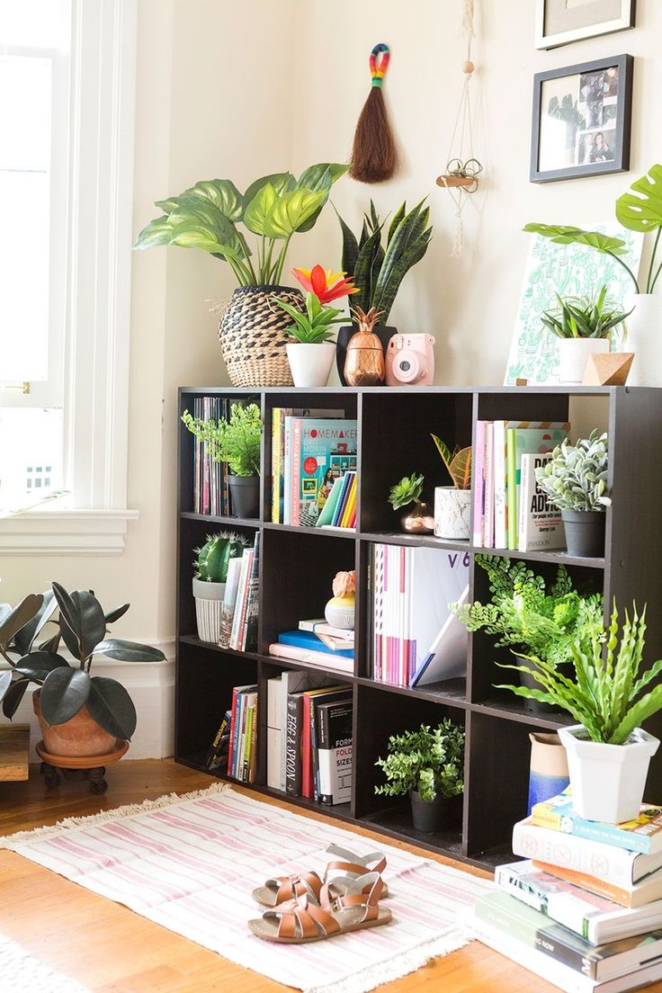 Pick These Artificial Plants For Fauxliage That Doesnt Look So Faux PlantsApartment LivingApartment IdeasPotted