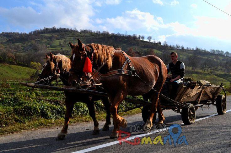 Maramures Lodges, Maramures, Romania | Photo Gallery - Maramures - People from Maramures