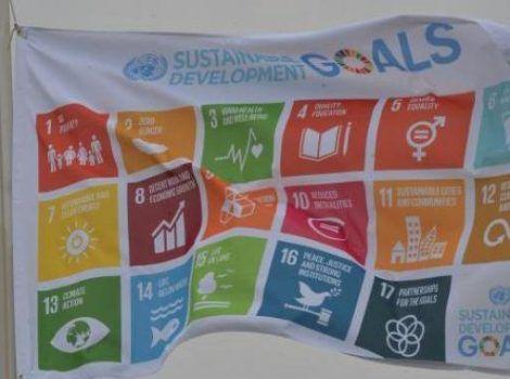 ONGs apontam desafios para Brasil atingir metas do Desenvolvimento Sustentável – Jornal do RN