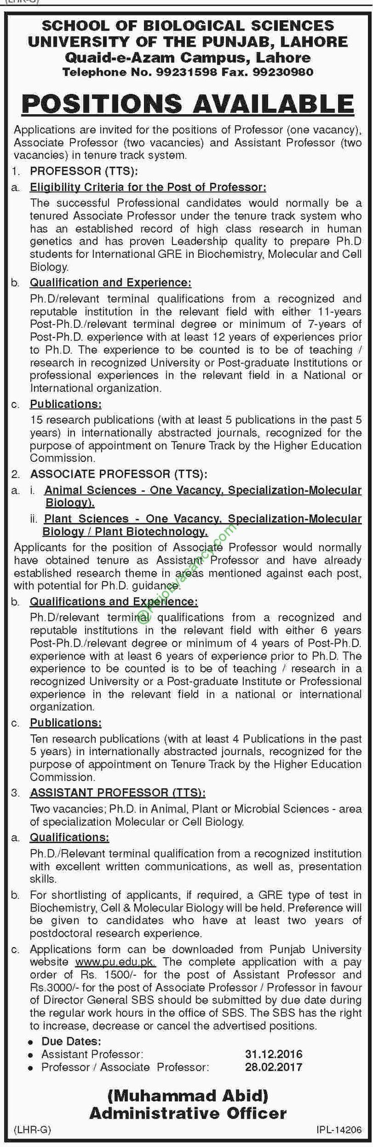 School Of Biological Sciences University Of The Punjab Jobs Dawn Newspaper