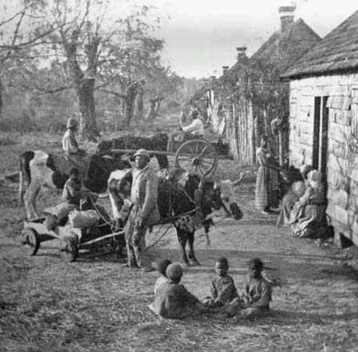 Pin on Slavery Photos