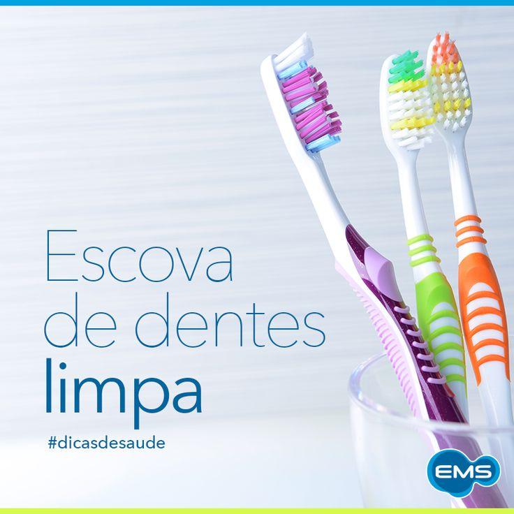 Manter a escova de dentes limpa pode evitar infecções e diarreias. #dicasdesaúde