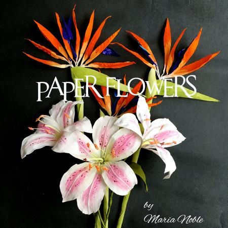 Tropical paper flower botanical for a birthday