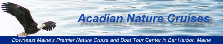 Bar Harbor, Maine Acadia Nature Cruises rates and schedule