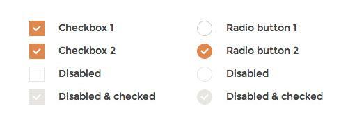 Customizing Checkbox and Radio Input with iCheck Plugin