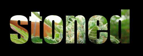 420 Dopeness 420-Dopeness-on-Sneakhype-29 – SNEAKHYPE