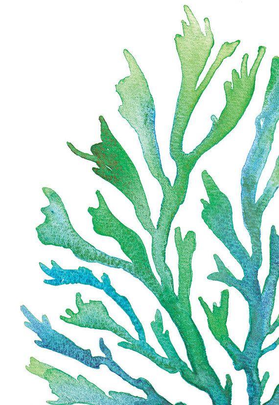 Image result for seaweed painting | crab | Pinterest | Seaweed ...