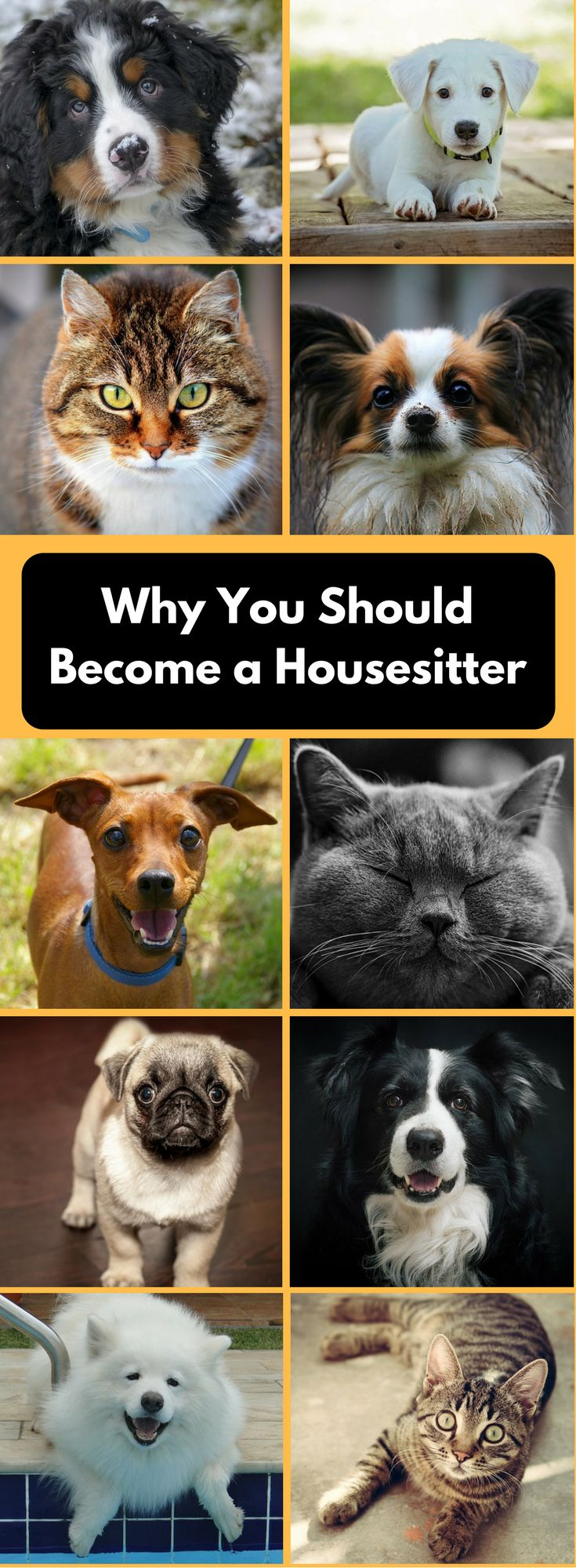 Housesitting | Become a housesitter | House sitters | House sitting while traveling | Pet sitters | Pet sitting