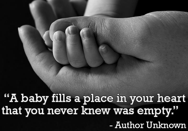 Pin On Pregnancy Quotes And Sayings