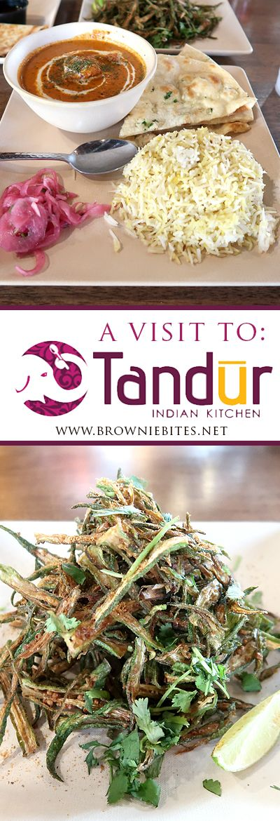 Tandur Indian Kitchen Review in Knoxville Tennessee