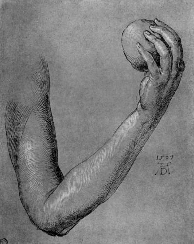 Arm of Eve - Albrecht Durer, Wikipaintings