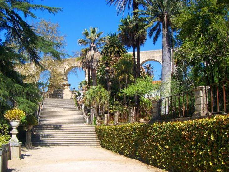 Jardim Botânico, Coimbra