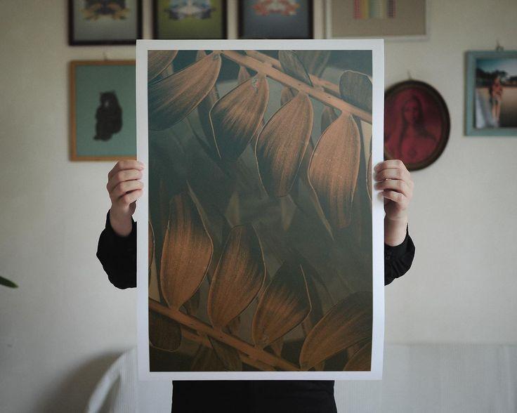 Altered Flora V, 42 X 59,4 cm (A2), Limited to 30 editions. Find it here: http://shop.palegrain.com/product/altered-flora-v-large #limitededition #print #artwork #poster #wallpiece #interior #interiör #göteborg #sweden
