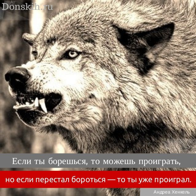 ...Если перестал бороться — то ты уже проиграл.  by Андрей Донских via slideshare