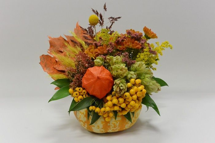 Synthesis in pumpkin by FLORA HELLAS