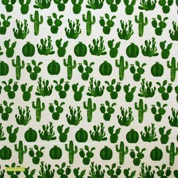 Cactus in Green