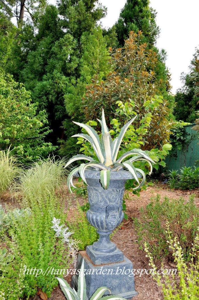 The redesigned Page-Rollins White Garden at Sarah P. Duke Gardens  gardens.duke.edu