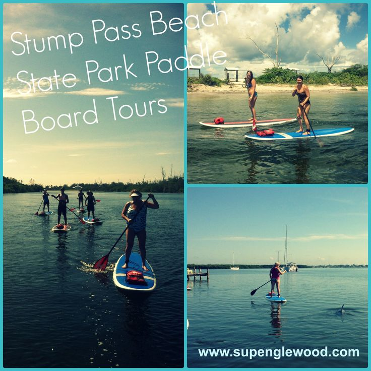Paddle boarding at stump pass beach state park in for Fishing in englewood florida
