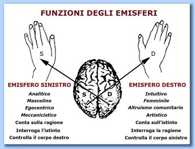emisfero destro | Prosit!