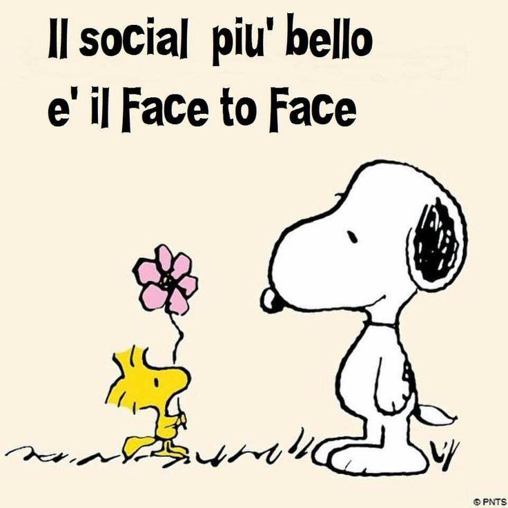 ll social più bello ♡♡♡