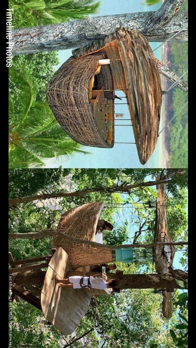 M s de 25 ideas incre bles sobre caba as en los arboles en - Cabana en los arboles ...