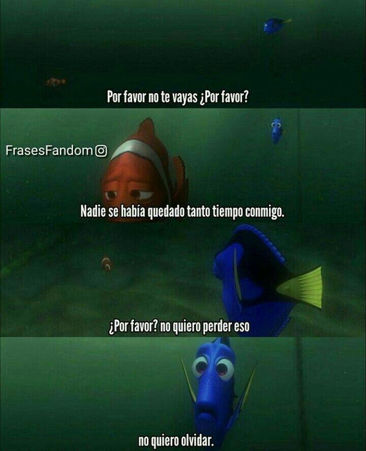 Buscando A Nemo Frases Peliculas Disney Frases De Desamor