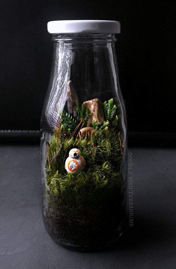 Star Wars Terrarium with BB-8 Episode VII by DoodleBirdie on Etsy