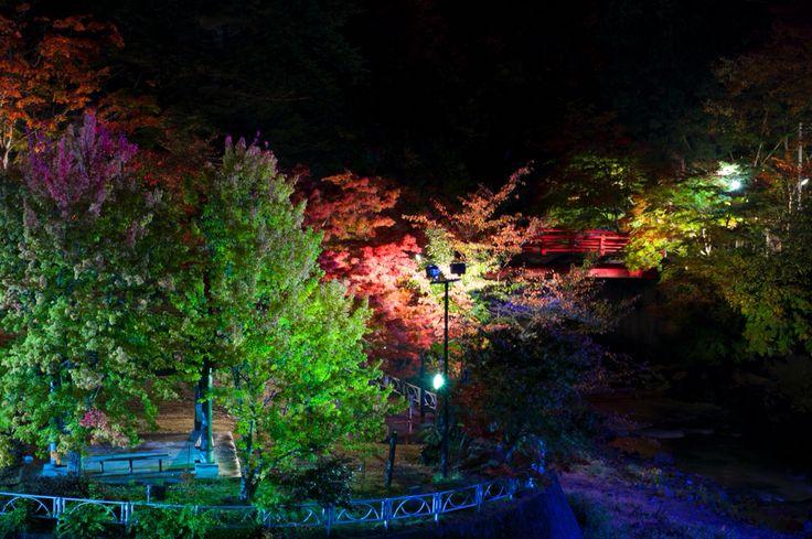 青森県黒石市 中野もみじ山  ライトアップ。