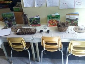 This display in the Kindergarten classroom began a discussion about growth and change in season, animals, and insects.