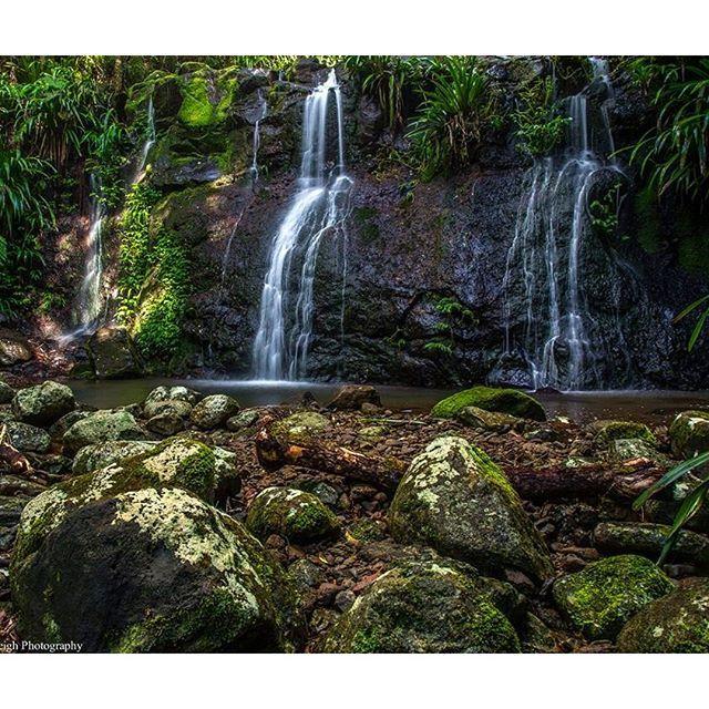 The very beautiful Neerigomindalala Falls at Lamington National Park #thisisqueensland by @caseyeveleighphotography