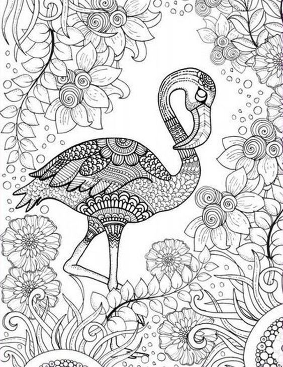 Free printable adult coloring page of pink Flamingo bird
