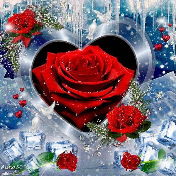 Schöne Herzen, Schöne Rosen, Valentinstagsgrüße, Der Schnee, Gifs, Pferde,  Schmetterlinge, Christbaumanhänger, Rosen
