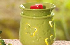 Warmer of the Month - February 2012  10% Off. Visit my website to shop!  www.scentsy.us/sherrylucas