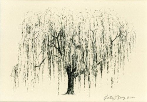 weeping willow - tattoo inspiration
