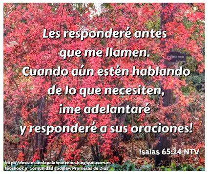Isaias 65: 24