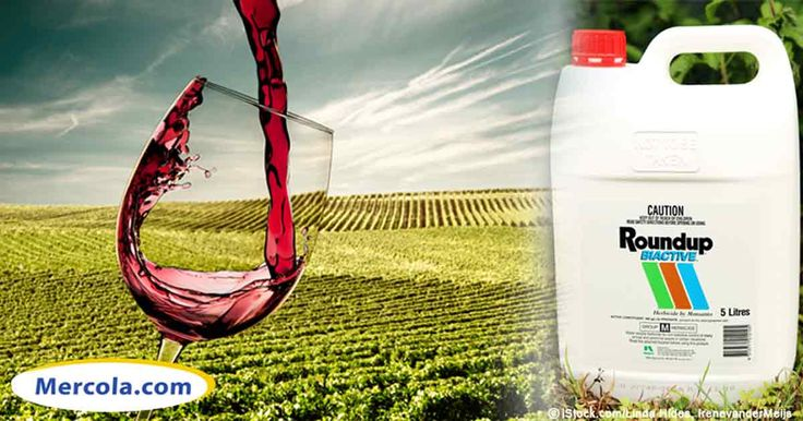 Not even your organic wine is safe from Monsanto. New analysis revealed glyphosate has now infiltrated not only wine, but also organic wine.