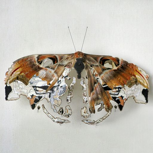 Anne ten Donkelaar.  Craft, Stitch, Textile, Butterfly, Brown, Broken, Decay.  www.origin-of-style.com