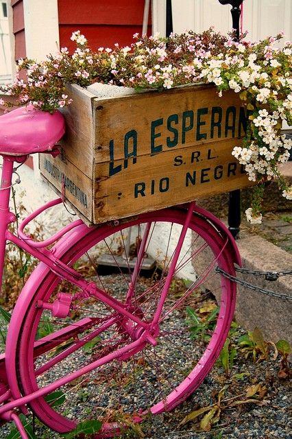 Pink bike, wood crate, flowers