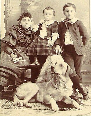 >>  Antique LARGE Beautiful DOG & Children Crystal CLEAR Clarity Cabinet PHOTO     eBay