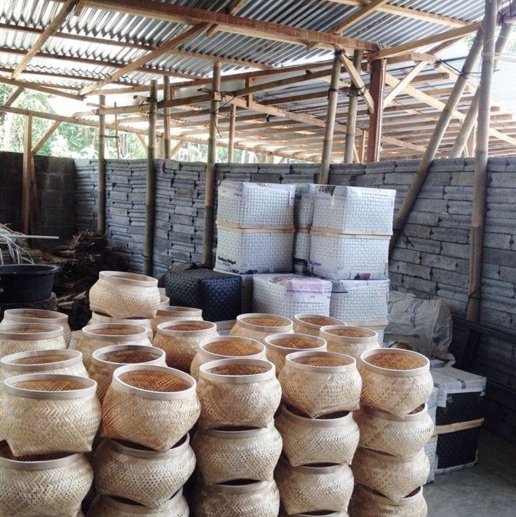 SVAS Living basket workshop